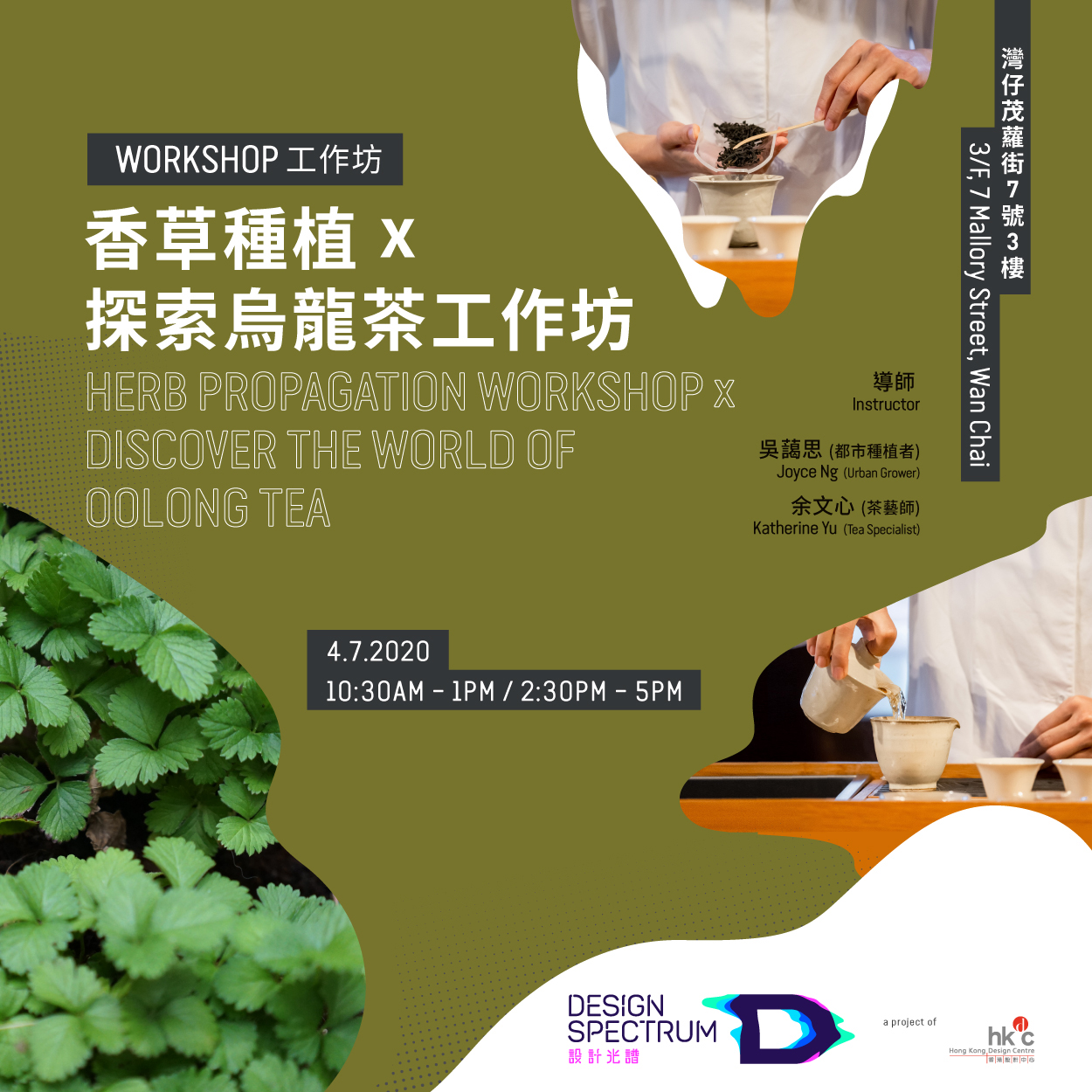 Design Spectrumherb-propagation-workshop-x-discover-the-world-of-oolong-tea